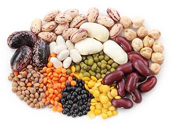bohnen-linsen_protein